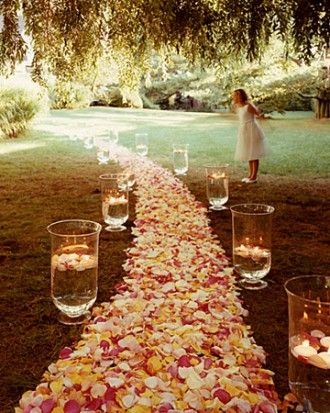 A rose covered aisle